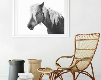 Horse Photo | Animal Wall Art | Black and White Equine Print
