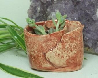 Succulent planter  mini hand built pottery planter Easy Water planter Maroon