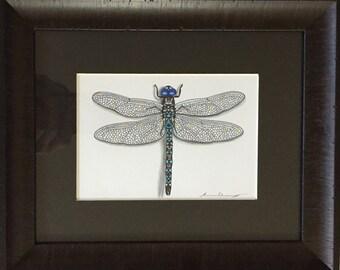 Original Hand Drawn Dragonfly