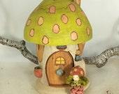 Willodel Mushroom Home Starter Set