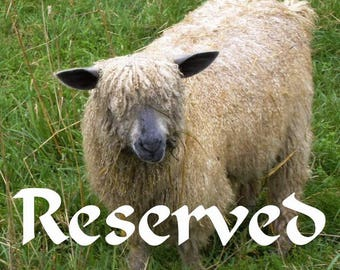 Reserved for Marian, Handspun yarn from my East Frisean milk sheep - 5.2 oz, 157 yards