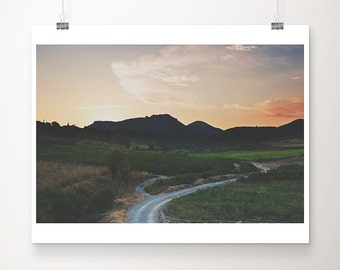 vineyard photograph landscape photography sunset photograph french decor road photograph travel photography France photograph