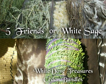 "Cedar & White Sage Bundle ~ 5 Friends Blend ~ Smudge Stick White Sage Sweet Grass Copal Desert Sage Native Sacred Smoke 7"" Fat"