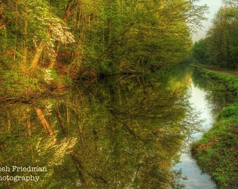 Delaware Canal and Towpath in Spring, Landscape Photograph, Dogwood Tree, Morning Light, Zen, Bucks County, Pennsylvania, Nature Photography