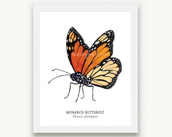 Monarch Butterfly Print - Unmatted
