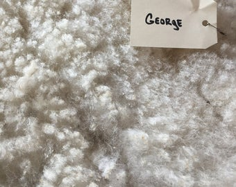 White fleece from Gulf Coast Native - George