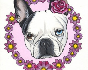 Original Boston Terrier Drawing / Acrylic paint on paper / framed