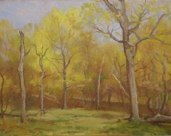 Spring Landscape, May Landscape, Landscape With Trees, Oil Landscape