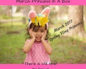 Monthly Subscription  - Princess In A Box - Monthly Subscription Box - Girls Easter Gift - Toddler Girl Gift -  Hair Accessory - Easter Gift