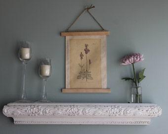 Botanical Lavender Print, Botanical Canvas Print