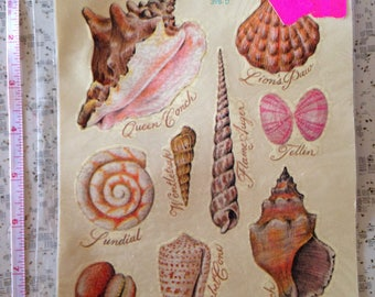 vintage deadstock meyercord shell decals 1978