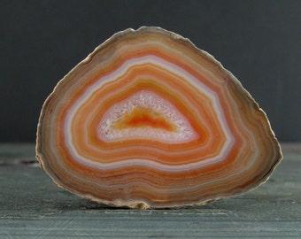 Beautiful Agate slice cabochon S7359