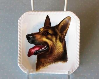 "Vintage GERMAN SHEPARD Dog Plate - Bone China - ""Royal Adderley"""