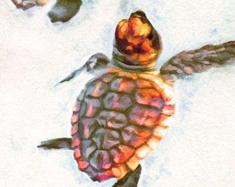 Sea Turtle Babies, Hatchlings, Gift for Turtle Lover, Sea Turtle Canvas, Turtle Art, Sea Turtle Painting, Art Print, Beach Decor, Ocean Art
