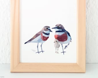 Dotterel birds, Banded dotterel pair, Sea birds, New Zealand birds, Kiwi art, New Zealand wildlife, Mother father baby art, Animal parents