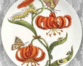 Lily II melamine plate