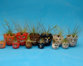 Cats, Planter, Air Plants, Succulents, Joyful Gift, A Cat for any Occasion