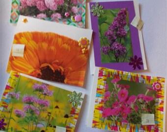 Flower Greeting Card   Flower Photo Card    Friendship Card  Birthday Card  Custom Message Card  EcoFriendly Cards  FREE US Shipping