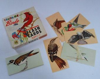 Set of 37 vintage bird flash cards