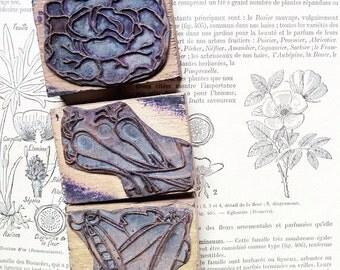 French vintage rubber stamps, vegetables, vegan,