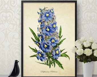Botanical Print, Delphinium Print, Flower Print, Delphinium Botanical Print, Blue Flower Art Print, Decorative Botanical Reproduction FL077