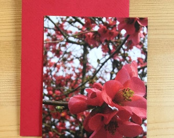 Greeting Card | incl. red Envelope |  Thank you | Format DIN A7