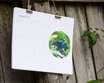 Wall Calendar 2017, Butterflies 2017 Calendar, Large Calendar 2017 2018 Butterfly