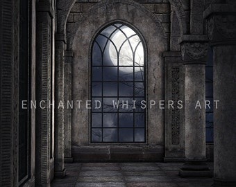 premade background, castle backdrop, Photoshop background, photo manipulation, Gothic background, stock image, fantasy backdrop, photo edit