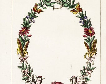 Original Antique Natural History Botanical Letter S Hand Colored Engraving