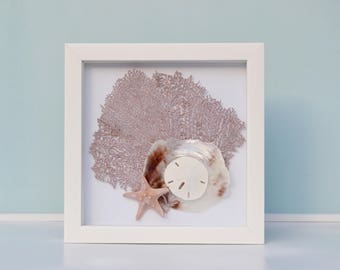 Beach Decor, Beach Wedding Gift, Nautical Seafan Shadow Box, Seashell Frame, Nautical Decor, Shell Shadow box, Coastal Anniversary Gift