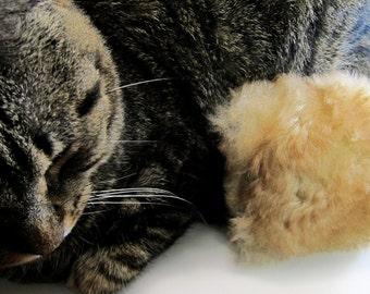 Cat Toy Pillow, Catnip Cat Pillow, Catnip Pillow, Unique Cat Toy, Rattle Cat Pillow, Tan Sheepskin
