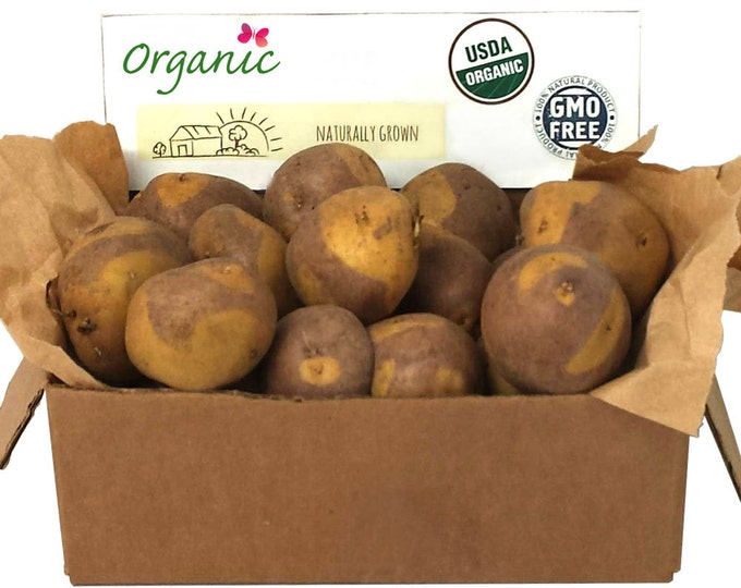 Masquerade Seed Potato 2 Lbs. Certified Organic Purple and Yellow Seed Potatoes- Spring Shipping Non-GMO