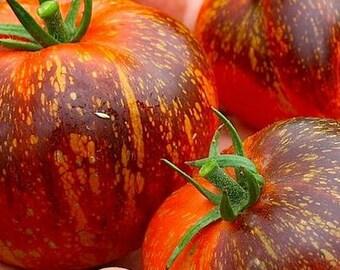 Dark Galaxy Tomato,  OP rare seeds
