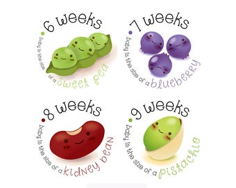 Pregnancy Stickers - Belly Stickers - Baby Bump Weekly Stickers - Pregnancy Announcement - Baby Reveal
