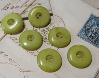6 Casein Lime Buttons Vintage plastic