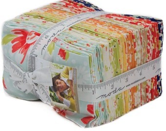 In-Stock  Coney Island Fat Quarter Bundle by Fig Tree Quilts for Moda Fabrics - 20280AB