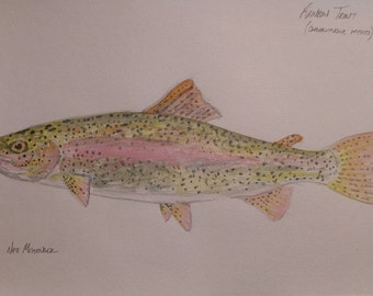 Rainbow trout painting.