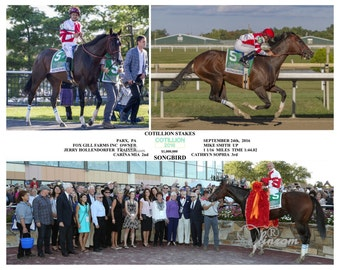 Songbird Cotillion Stakes Compsite Photo 10 x 8