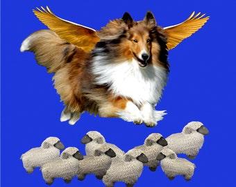 Flying Sheltie