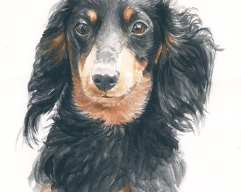 Custom pet portait. Dog portrait. Dachshund art. Dachshund. Original watercolor. Dachshund gift