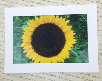 Yellow Sunflower Photo Note Card, Sunflower Greeting Card with Envelope