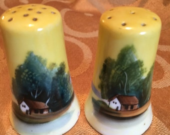 Vintage Salt and Pepper Shakers. Hand Painted Made in Japan Ceramic Beautiful Salt and Pepper Shakers.