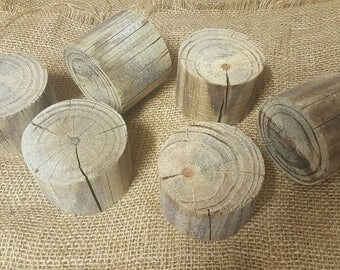 Fairy Garden Accessories x 2 logs