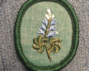 Vintage Retired Girl Scout Troop Crest (1) - blue purple flowers flower