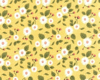 Lemonade Stand Backing Fabric