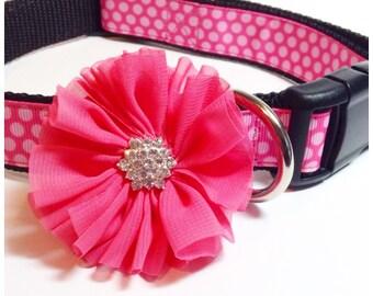 Dog collar flowers, dog collar, Set of 2, girl dog accessories, Dog collar Bow, Dog Bows, Collar Bow, Detachable Bows, Collar Flowers, dog