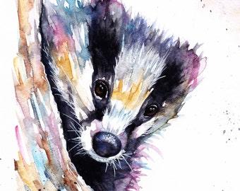 Original Watercolour Badger Print by Artist Be Coventry Wildlife Animal Art