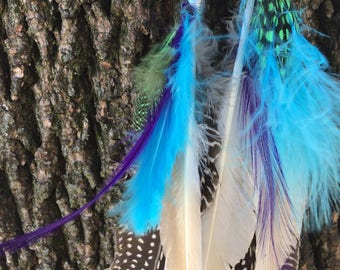 assorted feather earrings