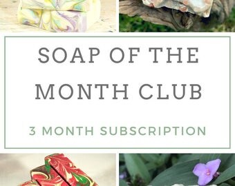 Bath Subscription Box - Monthly Subscription Box - Cold Process Soap - Natural Soap - Artisan Soap - Homemade Soap - Gift for Her - 3 Month