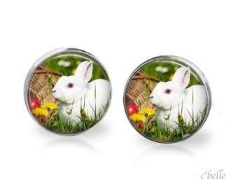 Ear Easter Bunny of bunnies 4